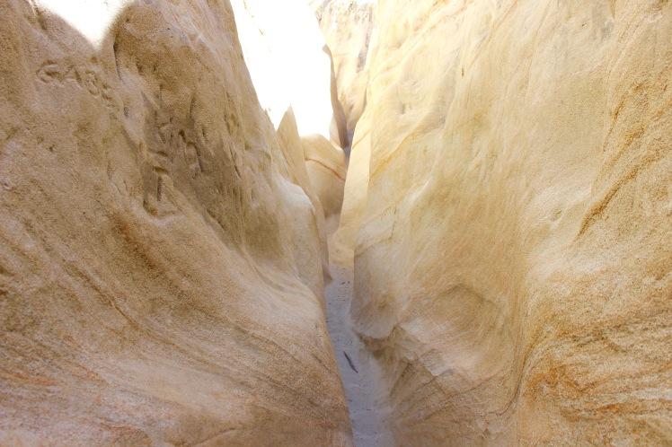 san diego mushroom caves